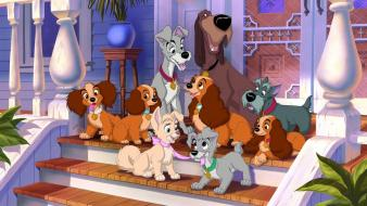 Disney company lady and the tramp dogs movies wallpaper