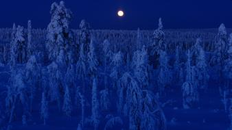 Finland full moon blue dark forests wallpaper