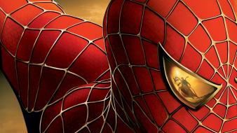 Marvel comics spiderman hero movies wallpaper