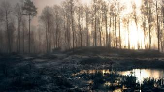 Slender man forests mist trees wallpaper