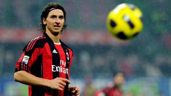 Ac milan zlatan ibrahimovic soccer sports yellow wallpaper