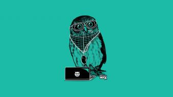 Glasses laptops minimalistic owls wallpaper