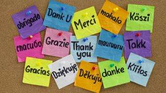 Language notebook paper notes thank you wallpaper