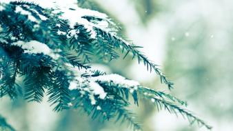 Nature snow vintage winter wallpaper