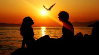 Sun birds couple love scenic Wallpaper