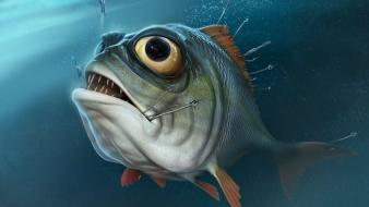 3d fish wallpaper