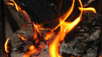 Coal fire macro wood wallpaper
