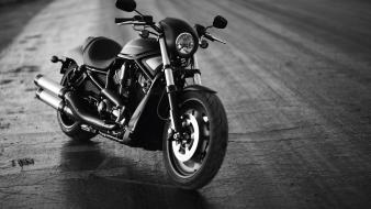 Harleydavidson monochrome motorbikes night wallpaper