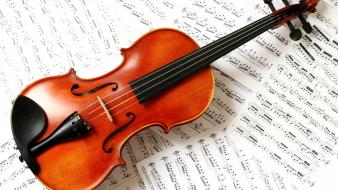 Music notes violins wallpaper