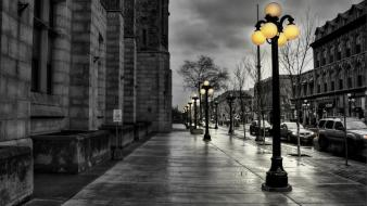 White nature selective coloring street lights walk wallpaper
