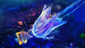 Adam spizak artwork blue fish jellyfish wallpaper