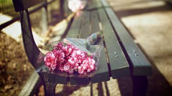Bench bouquet flowers pink wallpaper