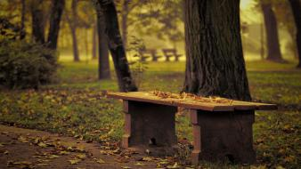 Bench garden landscapes nature parks Wallpaper