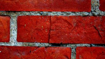 Bricks macro wall wallpaper