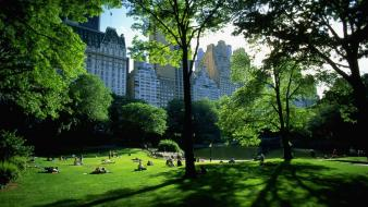 Central park new york city wallpaper