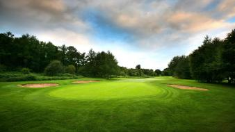 Golf course grass green trees wallpaper