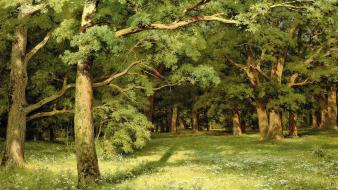 Ivan shishkin artwork forests wallpaper