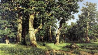 Ivan shishkin landscapes nature oak paintings Wallpaper