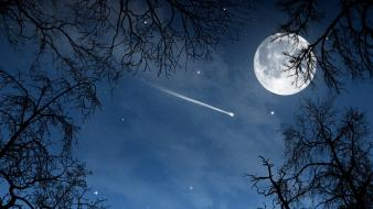 Moon branches comet nature night wallpaper