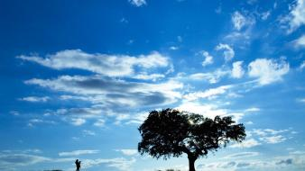 Portugal blue landscapes lonely silhouettes wallpaper