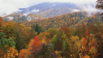 Appalachian north carolina mountains Wallpaper