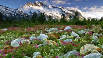 British columbia canada land landscapes nature wallpaper