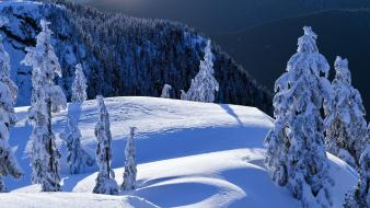 British columbia mount vancouver north parks wallpaper