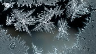 Frost glass ice crystals Wallpaper