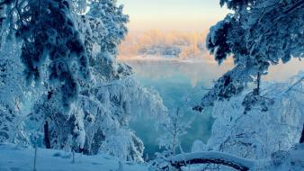Frozen landscapes nature snow trees wallpaper