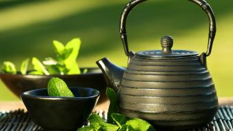 Green tea highquality mint nature wallpaper