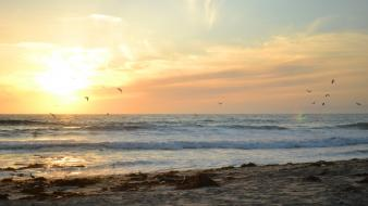 Los angeles beaches sunset wallpaper