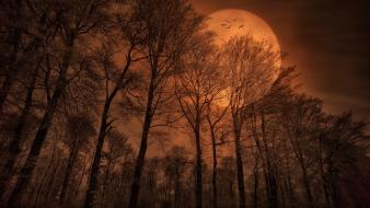Moon creepy landscapes monochrome nature wallpaper