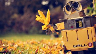 Walle autumn cartoons robots wallpaper