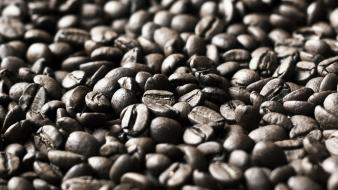 Coffee beans food objects wallpaper