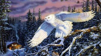 Forests owls paintings snow snowy owl wallpaper