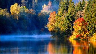 Lakes landscapes reflections trees wallpaper
