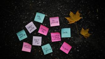 Leaves notes post it note quotes text wallpaper