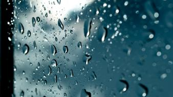 Macro rain on glass wallpaper