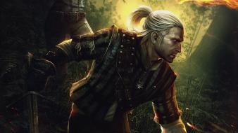 The witcher 2 assassins kings white wolf wallpaper