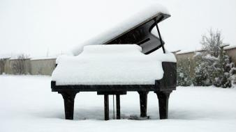 Flowers piano snow winter Wallpaper