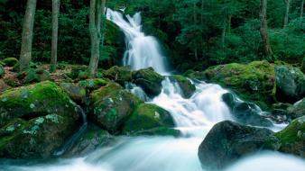 Falls great smoky mountains creek north carolina wallpaper