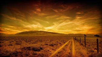Birds country road skyscapes wallpaper