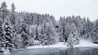 Cabin forests frozen lake nature pine trees wallpaper
