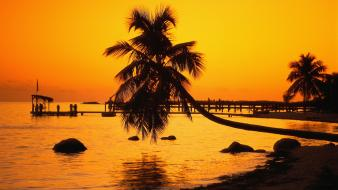 Florida keys nature silhouettes sunset Wallpaper