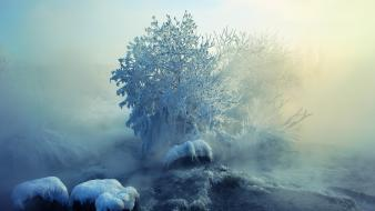 Ice mist snow trees wallpaper