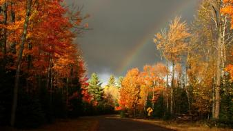 Autumn clouds colors forests multicolor wallpaper