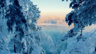 Forests frozen lake lakes landscapes wallpaper