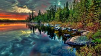 Forests sunset water Wallpaper