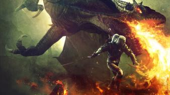 Pc the witcher 2 assassins kings dragons wallpaper