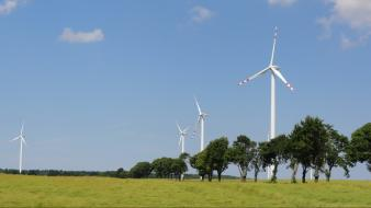 Alternative energy fields wind windmills Wallpaper